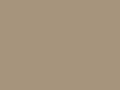 Licht beige (32) RAL----