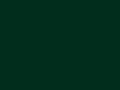 Dennegroen - RAL6009