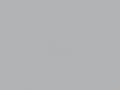 Zilvergrijs - RAL9006
