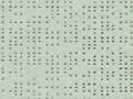 Steenkleur 92-2171
